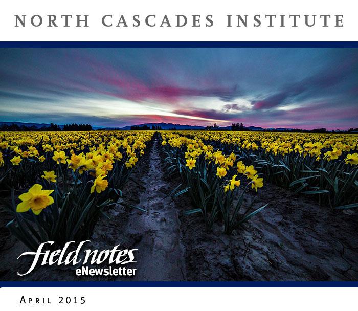 15-04-Apr-Enews-Header