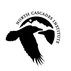 NCI Logo - square black