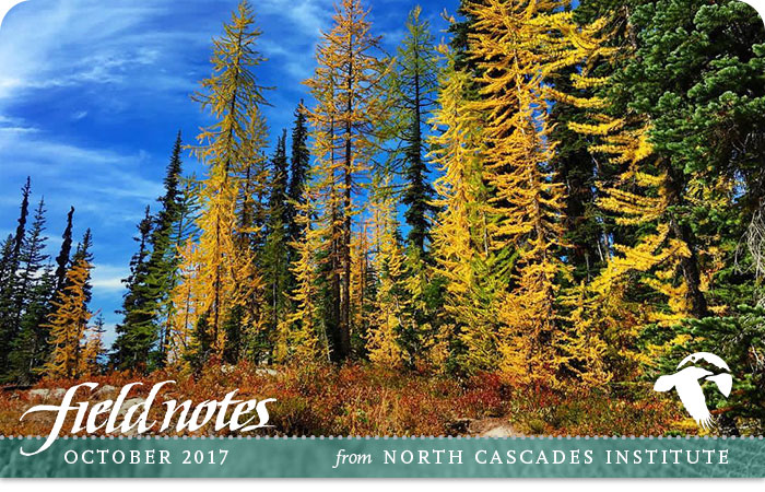 North-Cascades-Institute-FieldNotes